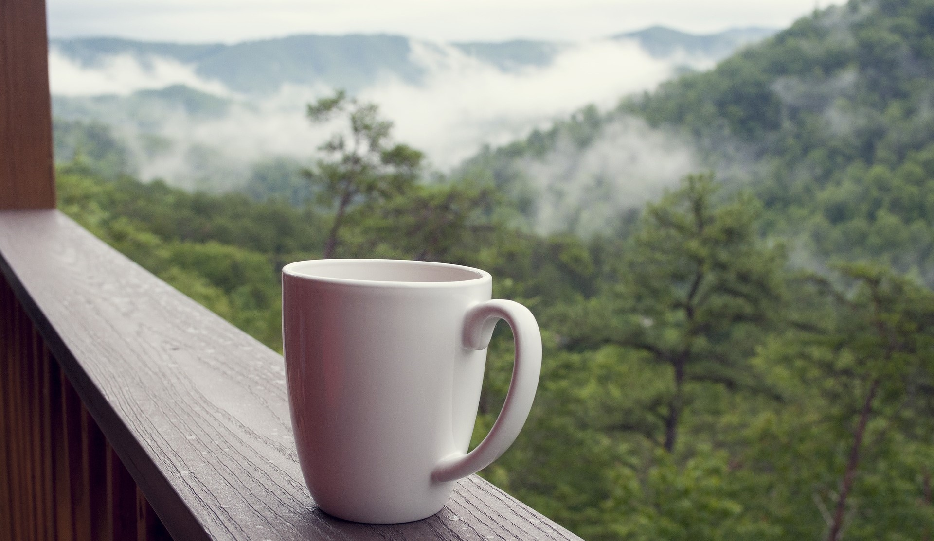 A cup of tea  and somky mountains